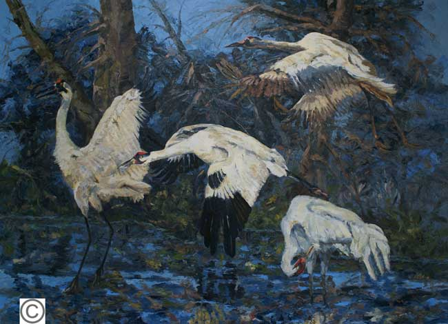 DeAnn Melton oil painting of whooping cranes among trees and water at night